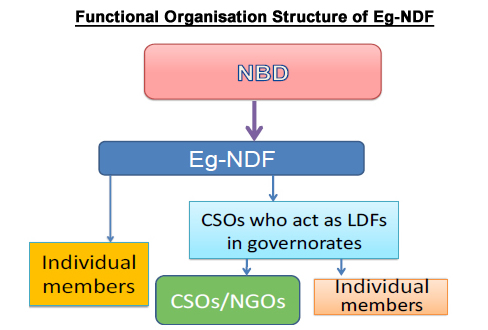 Functional Organisation Structure of Eg-NDF