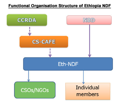 Functional Organisation Structure of Ethiopia NDF