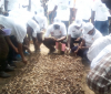 Tying Loose Ends to Save The Environment: Burundi Dedicates and Observes Days to Water Quality, The Fight Against Drought, Protection of Biodiversity ...